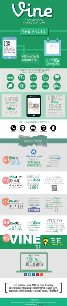 vine videos infographic